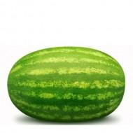 Majica za trudnice lubenica